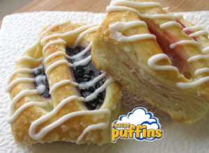 fundraising programs - pastry puffins